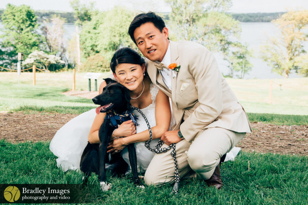 The River Farm Horticultural Society Bride and Groom Dog